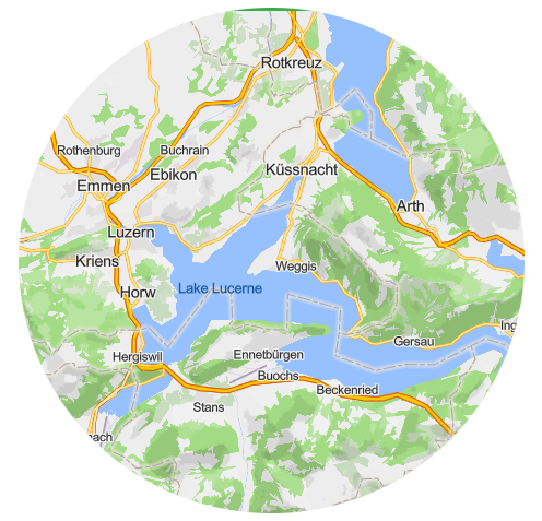 Map view transactions: vector tiles and raster tiles
